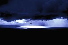 Lonesome bird (E-C-K ART) Tags: blue sky cloud bird clouds dark heaven cloudy acores