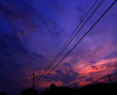 Passion (Jose Luis Gomez Gomez) Tags: sunset sky espaa clouds fence atardecer twilight spain grove dusk streetlights pylon cables wires cielo nubes farolas telephonepole cantabria anochecer nightfall valla crepsculo arboleda pilagos vioo postetelefnico torredealtatensin