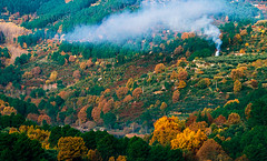 el otoño en Arenas _DSC0018 r r 2   em c ma (tomas meson) Tags: de san pantano pedro arenas montaña candeleda sierradegredos