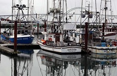 Newport - in a Shadow of Bridge.  -    (komissarov_a) Tags: ocean seagulls lighthouse beer bicycle oregon port canon boat town fishing surf fishermen pacific lodging small capital great drinking salmon streetphotography restaurants crab shrimp fresh historic problem binoculars 101 newport surfboard shops seafood oysters 5d dungeness oregoncoast whales local rogue m3 tuna rgb yaquinahead eclectic authentic array agatebeach bayfront interests hikingboots   friendliest establishments hatfieldmarinesciencecenter             komissarova