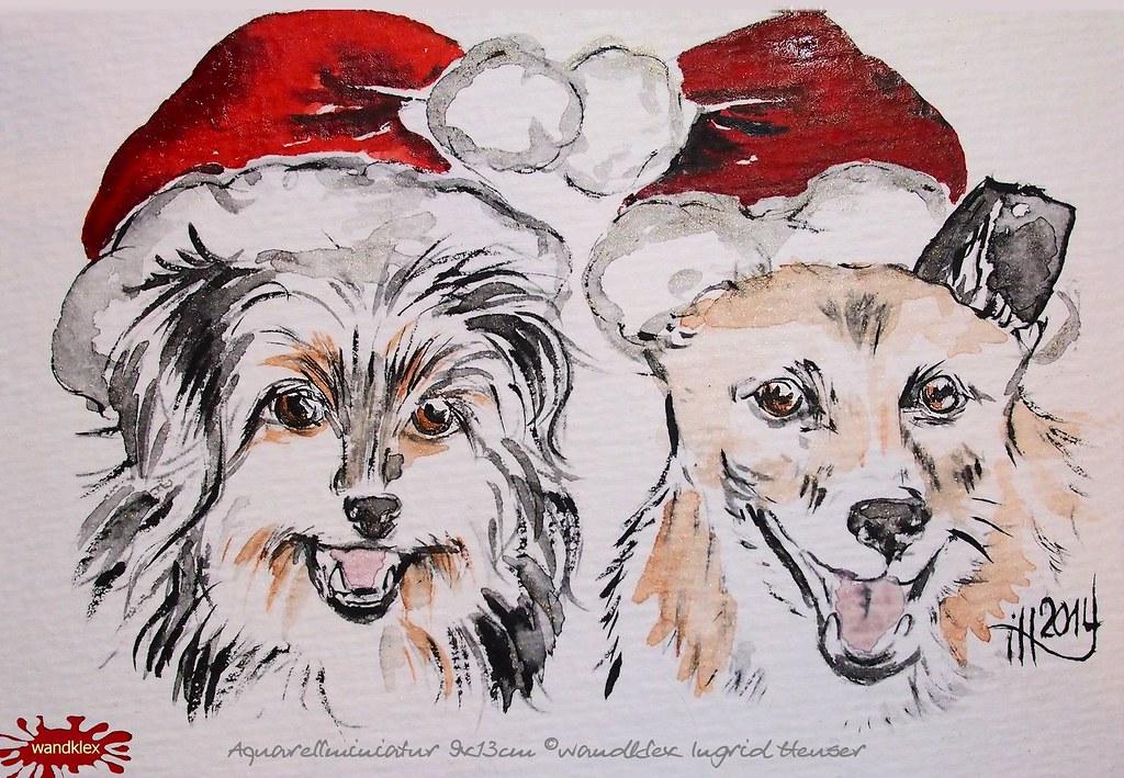 Mops Bilder Weihnachten.The World S Best Photos Of Mops And Weihnachten Flickr Hive Mind