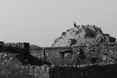 at the top (gurpreet_singh.) Tags: blackandwhite india man heritage monochrome site ruins fort top delhi solo lonely tuglakabad
