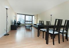 151.Michigan.3518.LR2 (millenniumparkplaza) Tags: horizontal model livingroom mpp furnished t18 13518 1bed