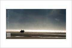 in a dream.... (Emmanuel DEPARIS) Tags: sunset horse beach clouds de seaside nikon le pas plage calais cavaliers d4 touquet cotedopale équestre emmanueldeparis