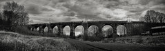 Arches (Grifos) Tags: england blackandwhite bw railway viaduct earlestown sankeyvalley newtonlewillows newtoninmakerfield