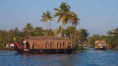House to Alappuzha (yuriye) Tags: house boat kerala india backwaters water lake alleppy allapurzha winter palm trees alappuzha aleppy yuriye river индия ship hotel travel outdoor tree morning