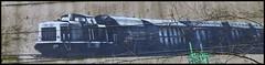 Duisburg - Rheinpark (abudulla.saheem) Tags: art germany deutschland lumix graffiti kunst panasonic nrw duisburg ruhrgebiet ruhrarea ruhrpott rheinpark rhinepark abudullasaheem dmctz31