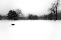 Harrybrook Park (Craig F. Barrett - Comments welcome) Tags: blackandwhite bw connecticut ct nikond810 nikkor1424mmf28 harrybrookpark craigfbarrett