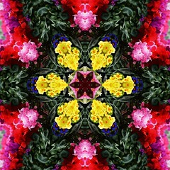 Kaleido Abstract 916 (Lostash) Tags: abstract art nature edited patterns shapes symmetry forms kaleidoscopes