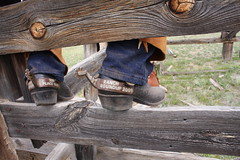 MOSTLY BOOTS (AZ CHAPS) Tags: ranch leather spurs cowboy boots wranglers chaps corral