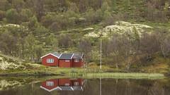 Haus am See (snej1972) Tags: vacation holiday oslo norway norge urlaub norwegen skien vaterundsohn