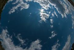 """Il cielo visto dagli occhi di un """"pesce"""" (Luca Angelini) Tags: acqua bambini campotosto cielobimbi giovanni katiuscia lago legno montagna neve palizzata soraya valeria verde laquila abruzzo italia"""