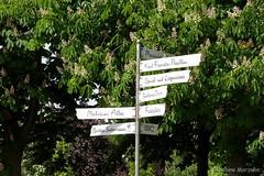 Alle Richtungen Schnes Wochenende (Sockenhummel) Tags: britzergarten wegweiser richtungen schilder hinweis grnberlin fuji x30 fujifilm finepix fujix30