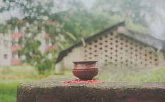 Fresh as nature,cool as the weather and stable as the pot! (mukesh.barnwal) Tags: pot tea house sky cold nature beauty beautiful roof flickr green india morning discoverindia