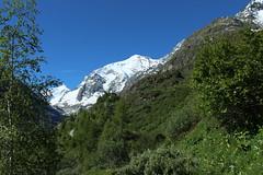 Grand Cornier et la cabane du Petit Mountet (bulbocode909) Tags: nature suisse vert bleu arbres neige paysages valais zinal grandcornier motagnes