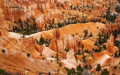 Bryce Canyon (Tanya Kogan) Tags: brycecanyon