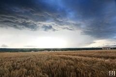 To the Sky (NeoNature) Tags: sky cloud storm france nature field rain weather canon landscape curtain horizon champs pluie atmosphere structure ciel normandie convection nuage paysage calvados rideau orage meteorology ambiance stormscape meteorologie