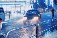 196/366 : Cats and Dogs (hidesax) Tags: street leica windows woman up rain japan lights tokyo shinjuku head taxi pipes rail x biker heavy raining soaked catsanddogs vario 365project 196366 366project hidesax 366project2016