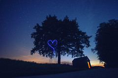 Lost in the Heart of Stars (Lux Obscura) Tags: stars night blue light darkness lost solitude 3 tree shelter cosmos heart