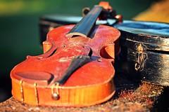 IMG_9755c - 11.09.2015 (hippo1107) Tags: violine geige musik instrument stillleben zahnderzeit antik alt canoneos650d canon eos 650d september 2015