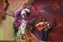 Los Gallos (DCullenV) Tags: belleza beauty fire grace passion flamenco dance music musica candid handheld performer performance guitar guitarist guitarra people baile msica travel sevilla andaluca espaa spain seville dslr nikon d70 summer night show entertainment gente photo photography foto fotografa stage decv david cullen vidal movement movimiento costume vestuario losgallos geotagged ps dancer woman dress polkadots purple rooster painting color colour digital street moment decisive