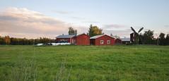 strandvägen 030 (Mika Lehtinen) Tags: strandvägen field grass farm mill öja finland windmill