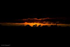 DSC_0228-HDR (timmie_winch) Tags: nikon nikond3000 d3000 august august2016 2016 sun sunset sunsetsuffolk sunsetoversuffolkcountryside sunsetovercornfields sunsetovercornfield silhouette 18105mm 18105vr nikon18105mmvrlens shadows golden goldenhour goldenlight elliedunn ellie eleanordunn ells eleanor ellsdunn dunn landscape landscapephotography landscapephotographer naturephotographer naturephotography nature timwinchphotography tim timwinch winch debenham ip14 suffolk