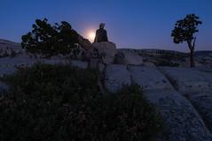 Rise of the Sturgeon Moon (adonyvan) Tags: yosemite yosemitenationalpark olmstedpoint california sturgeonmoon moonrise tamron