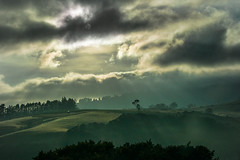 Morning sky (Ian@NZFlickr) Tags: tree shadow clouds morning light near waitati dunedin otago nz