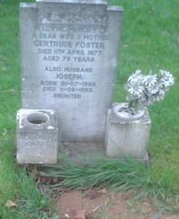 Foster, Gertrude, Frank (TeearLady59) Tags: outdoor bulwell foster gertrude frank