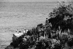 Walking on a wire (lorenzoviolone) Tags: agfascala200 bw blackwhite blackandwhite d5200 dslr flowers monochrome nikon nikond5200 plants reflex seascape vsco vscofilm waves beach cliff cliffside diving growing growth hike jump path sea seaside stpeterspool strangers travel:malta=aug2016 walking water wire marsaxlokk malta