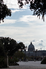 From Afar (Willers1404) Tags: rome italy holiday travel st peters vatican frame sky silhouette trees