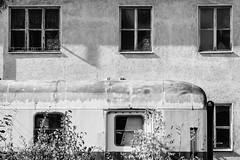2016-10-16-001-MaMa - Augsburg - A-Sd - 0031 - BW00001sr - W1920 (mair_matthias_1969) Tags: augsburg bayern deutschland de lumix panasonic dmcg7 dmcg70 mft microfourthirds g7 g70 lumixg7 lumixg70 nophotoshop keineschmutzigentricks ohneschmutzigetricks nodirtytricks gvario100300f4056 rschstativschelle roeschstativschelle rschlensringclamp roeschlensringclamp outdoor architektur gebude architecture building fenster windows
