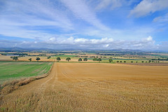 Strathmore Farmland (eric robb niven) Tags: ericrobbniven scotland dundee glamis landscape eassie landscapes nature cycling autumn