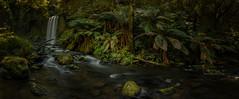 Hopetoun Falls-1371-Pano-Edit2015092714196 x 5873 (James Yu Photography) Tags: australia falls fern greatoceanroad hopetounfalls jamesphotography victoria