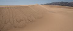 the dunes D75_6711 (steve bond Photog) Tags: dunes sanddunes mouintain deathvalley texture nationalpark california californialandscape seetheworld getoffthecouch nikon nikond750 wideangle wonderpana fotodiox sand