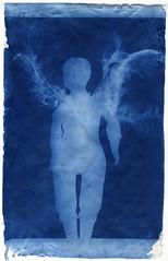each one is an angel (bunchadogs & susan) Tags: moderncyanotype wareformula angel fortunacalifornia