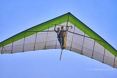 Hang Gliding (Valley Imagery) Tags: lennox head nsw hang gliding