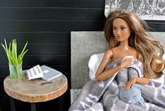 Cora's morning (svetlana.titova) Tags: doll dollfurniture dollaccessories dollhouse dollminiature diorama roombox onesixth onesixthscale dollphotography mattel barbie barbiemadetomove madetomovebarbie barbiefashionistas barbiestyle barbieoutfit mbili