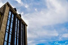 the Building (GreenEyes Photography) Tags: rennes greeneyesphotography bird oiseau batiment city ville vilaine eau water banc bleu couleur noir et blanc sepia love couple story
