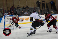 "2016 Rush vs Mallards (10/21/2016) • <a style=""font-size:0.8em;"" href=""http://www.flickr.com/photos/134016632@N02/30491143015/"" target=""_blank"">View on Flickr</a>"