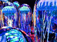 Color Experiments, Jelly Fish Art Glass (Ted Tamada) Tags: casio pointandshoot casioexilim exilim tedtamada tedtamadaphotography experimentalcolorphotography colorexperimentsinphotography