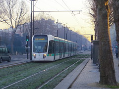 Nouvelle ligne -1- (Janvier 2015) (Ostrevents) Tags: door city morning paris france tree ecology gate europa europe track trolley transport january tram porte capitale janvier economy arbre tramway ville voie townplanning ligne matin lachapelle urbanisme cologie chn portedelachapelle conomie ostrevents