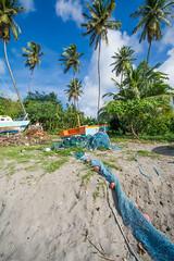 Up up and away.......! (Andy Johnson Photos) Tags: beach amazing nikon paradise skies palmtrees grenada