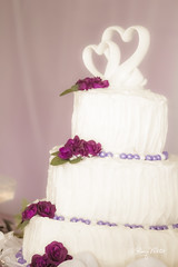Wedding (Art + Photography = ArtOgraphy) Tags: flowers wedding summer cake colorado general photos father stock daughter mother son ringbearer rings lillies bouquet waterfountain ringexchange generic sparklingcider floatingcandles ringpillow champagnefountain augustbride rememberingfather mothergaveawaybride carrotweddingcake
