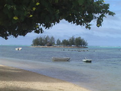 Beach in Mo'orea