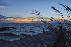 L`Albufera (serx92) Tags: sunset valencia spain madera windy viento pasarela puestadesol aire olas valenciana tiempo albufera saler