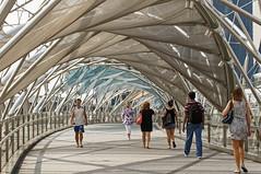Helix Bridge (fantommst) Tags: city bridge architecture marina bay design singapore mesh steel south centre sails pedestrian walkway helix sands singapur perforated canopies frittedglass marinabaysands lisaridings fantommst dnalike