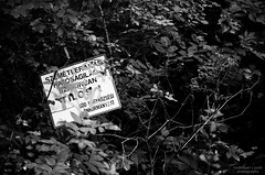 Warning! (vizcsap) Tags: summer warning bush nikon 85mm nikkor 18d d7000 nikond7000