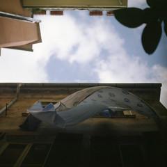 (*YIP*) Tags: italy 120 6x6 film analog mediumformat europe squareformat cinqueterre filmcamera analogphotography manarola 120mm filmphotography analogcamera shootfilm filmonly